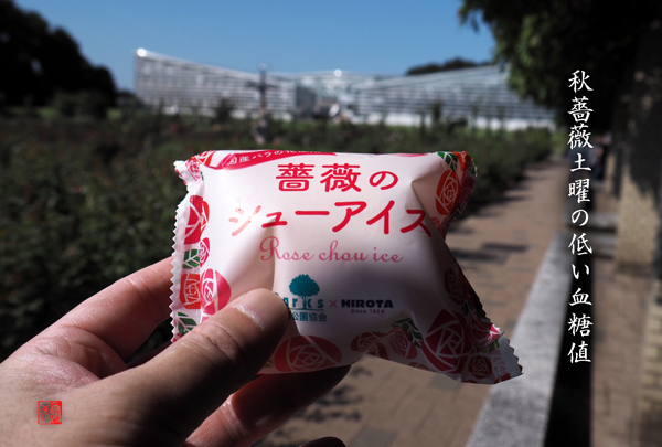 a akisobiyo rt c
