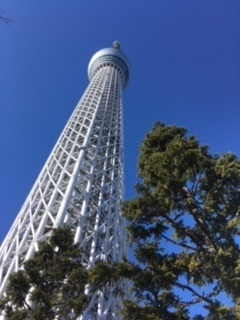 sky tree5