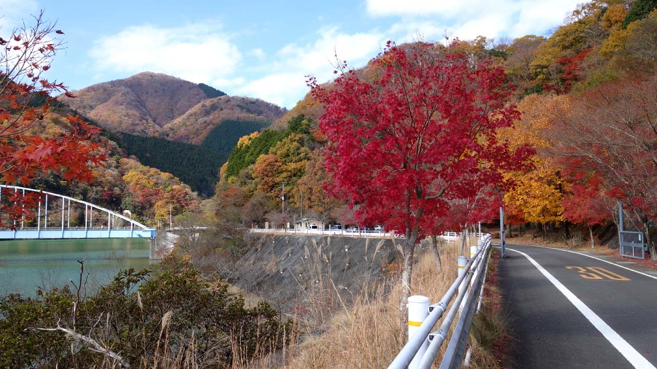 tanzawa17-02.jpg