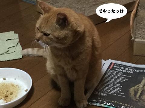 2017_10_06_4.jpg